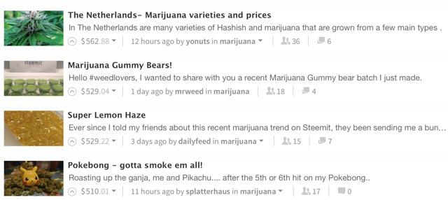 steemit marijuana
